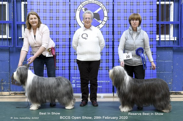 The Bearded Collie Club of Scotland :: Show Results